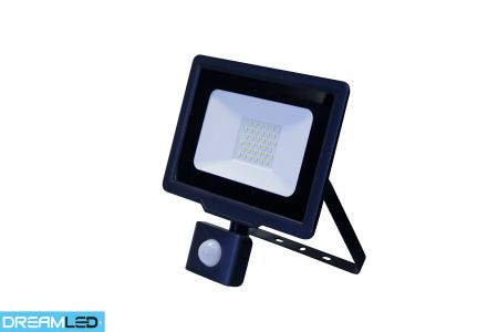 Led-buitenlamp 30 W met sensor Dreamled