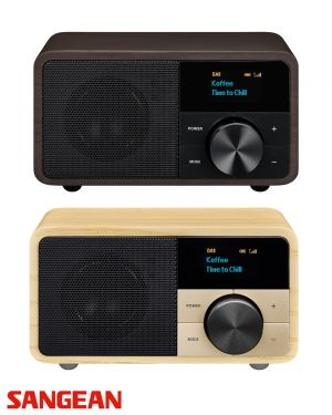 Compacte mini radio DDR-7